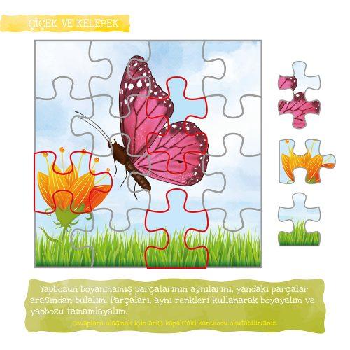 kelebek-nasil-olusur-20