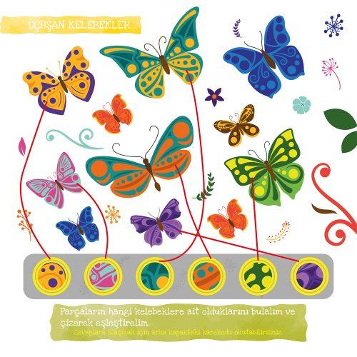 kelebek-nasil-olusur-23